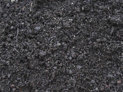 a picture of compost